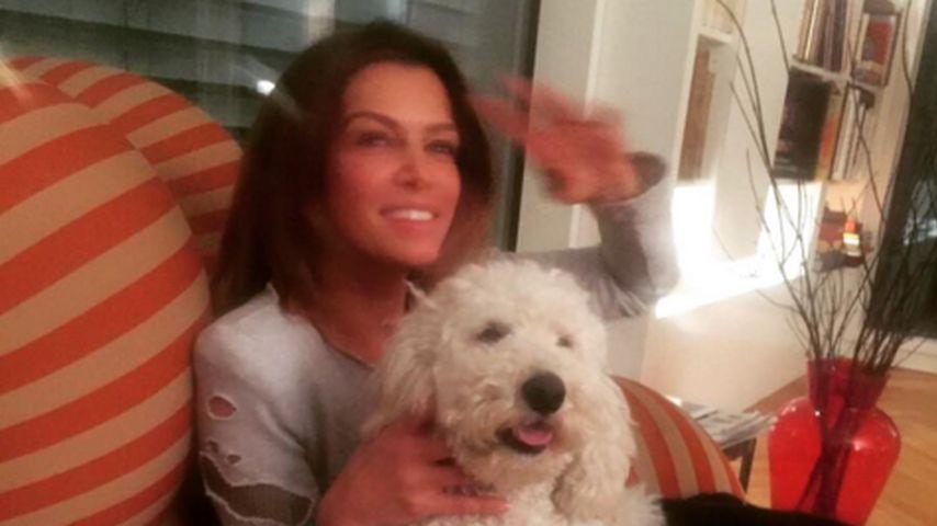 Sabia Boulahrouz: Zotteliger Vierbeiner gegen Liebes-Frust!