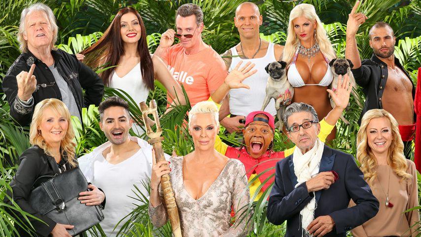 RTL bestätigt: Diese 12 Kandidaten ziehen ins Dschungelcamp!