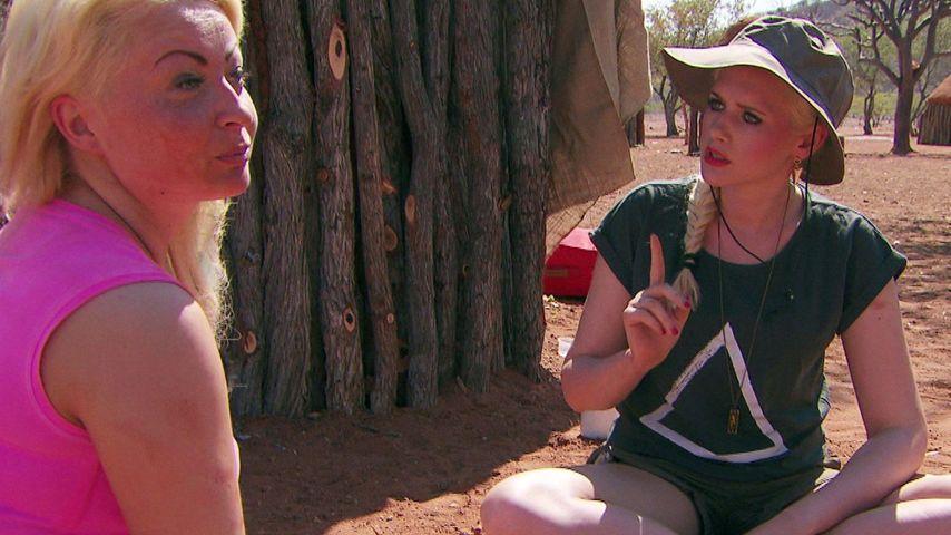 """Sarah vs. Miriam: IQ-Streit bei den """"Wild Girls"""""""