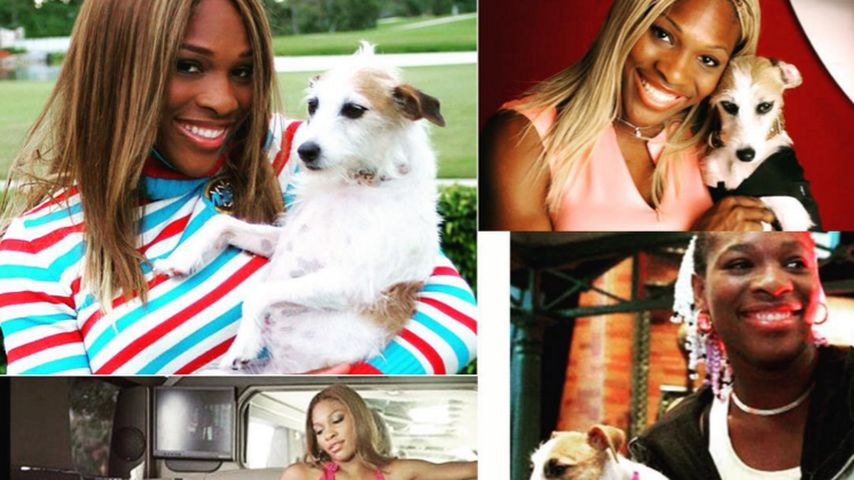 Trauriger Abschied: Serena Williams' Hündin Jackie ist tot