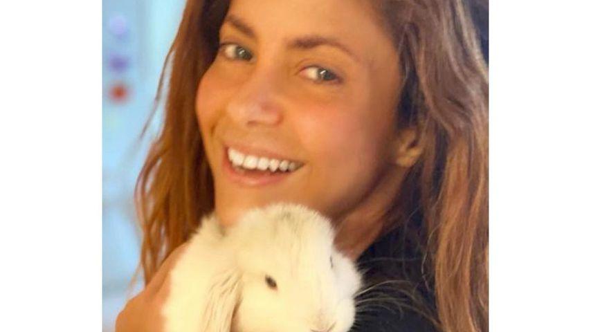 Shakira mit ihrem neuen Hasen