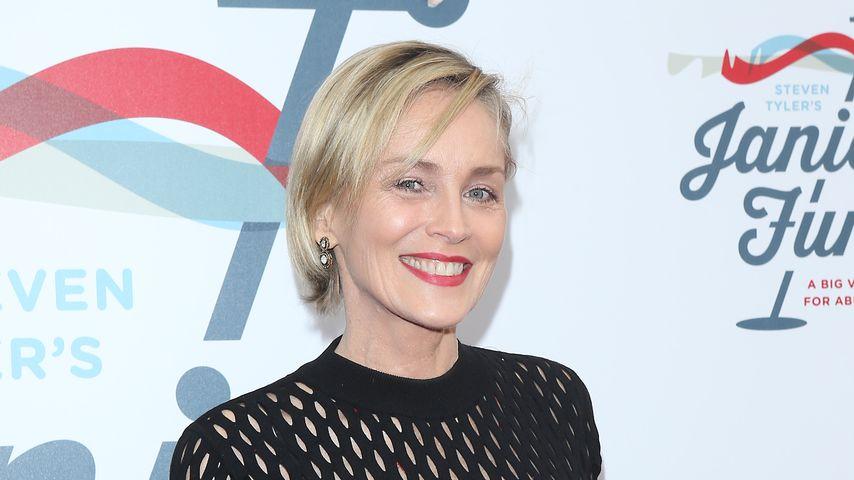Sharon Stone, Februar 2019