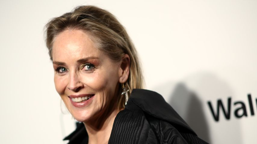 Sharon Stone, Februar 2020