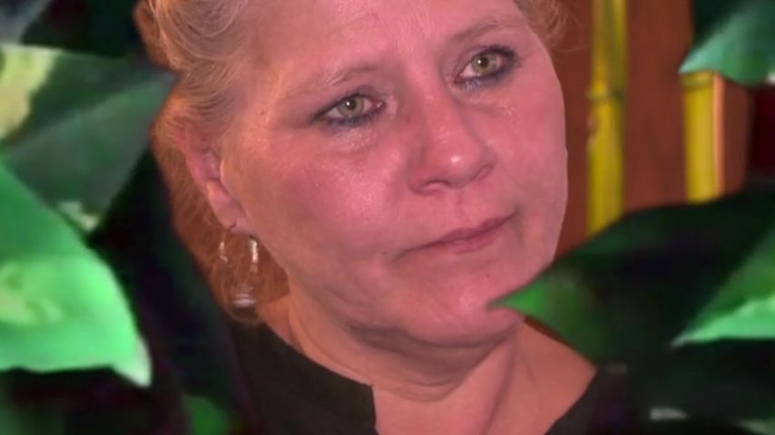 Dschungel-Alarm: Silvia Wollny isst Heuschrecken