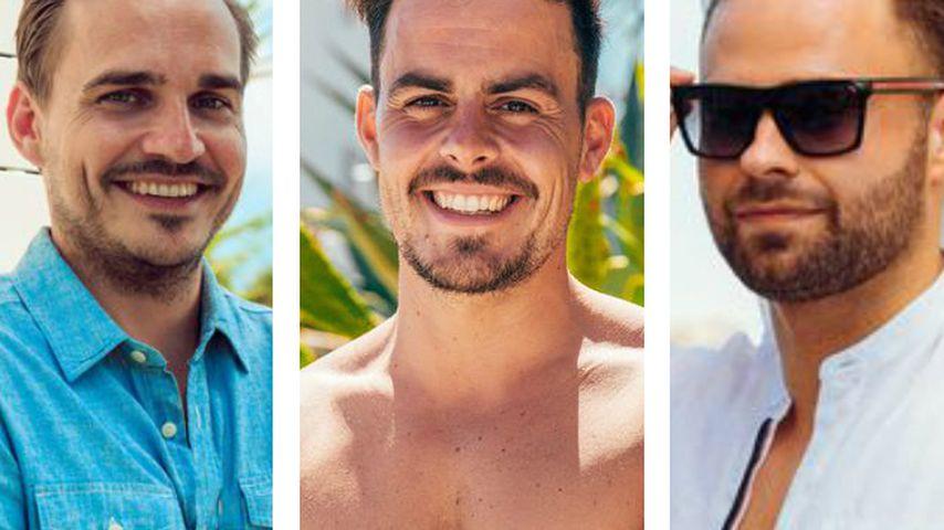 Neue Rosenbrüder? Sören, Manuel und Kevin im Bro-Urlaub