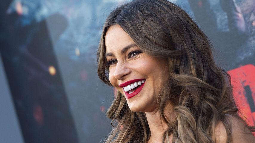 Zum siebten Mal: Sofia Vergara ist bestbezahlter Fernsehstar