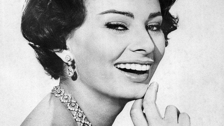 Schauspielerin Sophia Loren in jungen Jahren