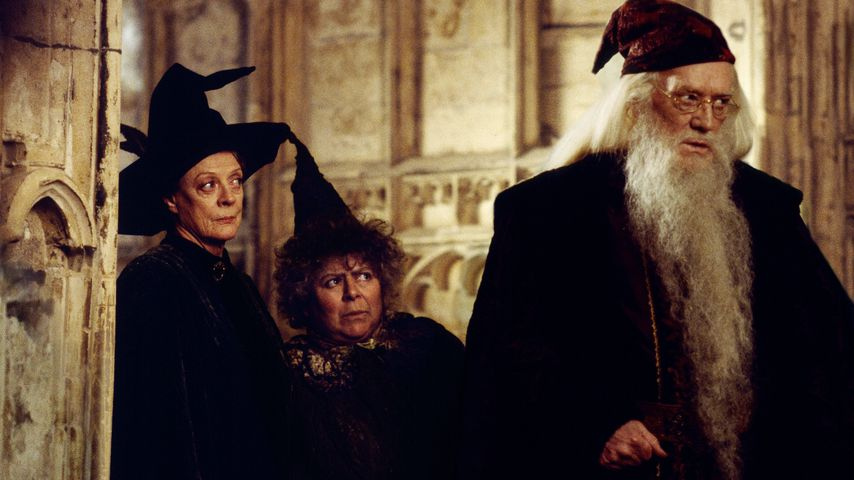 """Szene aus """"Harry Potter und die Kammer des Schreckens"""""""