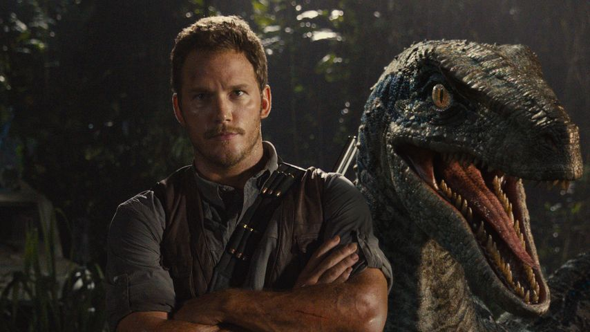 """Chris Pratt: Gibt's ein """"Jurassic World""""-Sequel mit ihm?"""