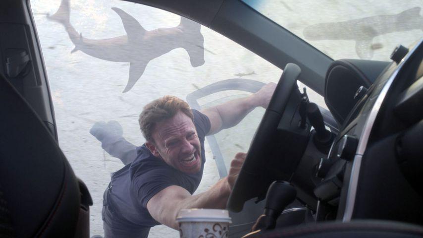 """1. Trailer: In """"Sharknado 5"""" fliegen sogar weltweit Haie!"""