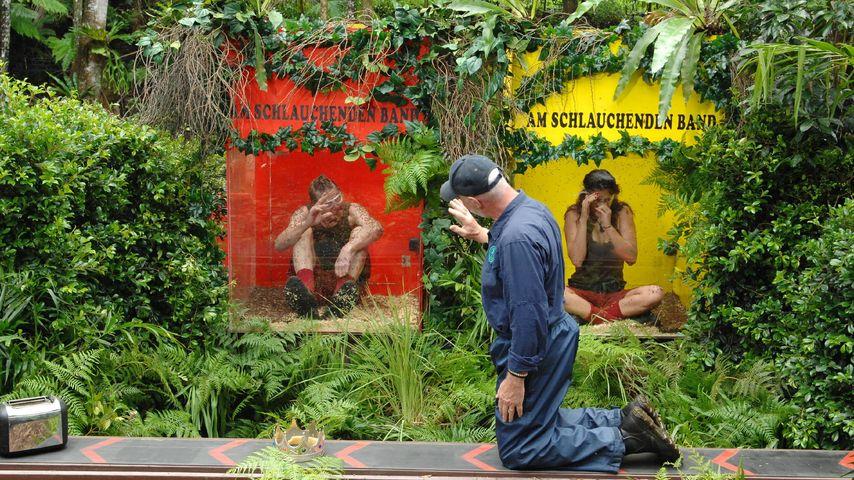 Dschungelprüfung: Dr. Bob verhindert mehr Sterne