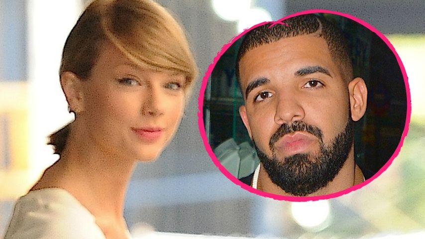 Miau! Jetzt kauft Drake schon Geschenke für Taylors Katzen