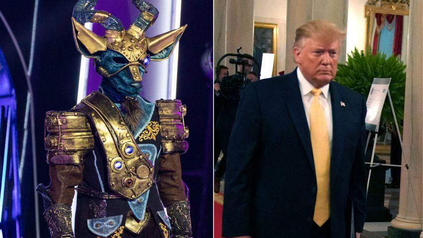 """Collage: """"The Masked Singer""""-Kudu und Donald Trump"""