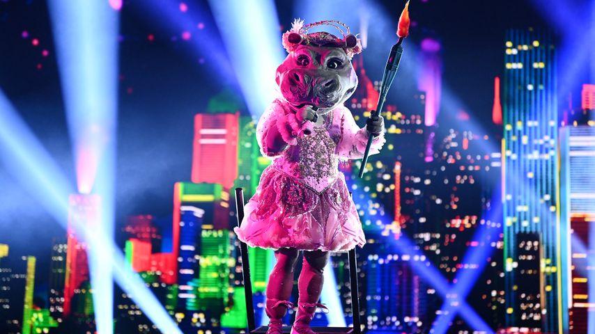 """""""The Masked Singer""""-Nilpferd in der vierten Show"""