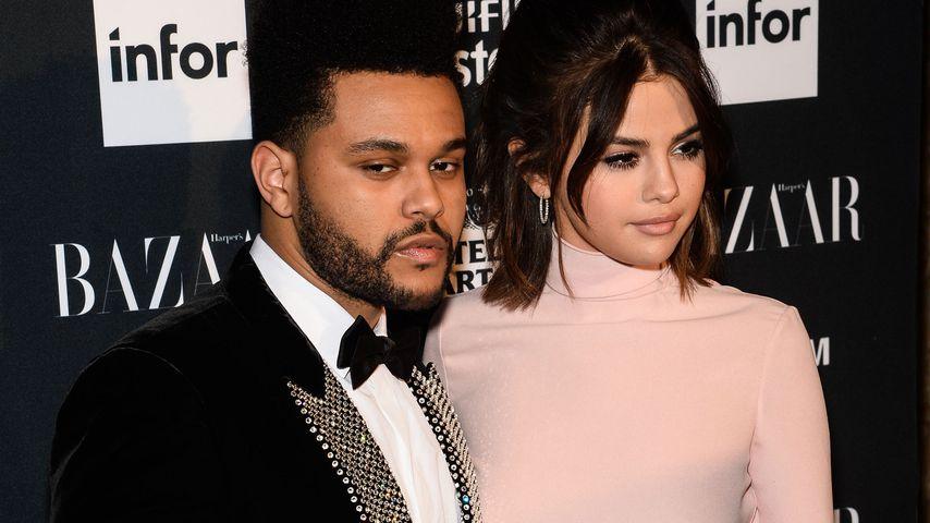 16.000-Dollar-Bleibe: Selena ist mit Weeknd zusammengezogen!