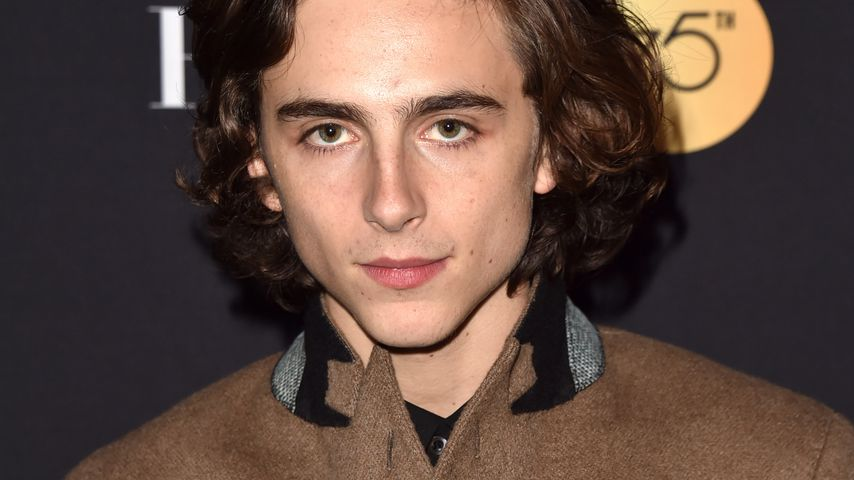 Timothée Chalamet beim Toronto International Film Festival