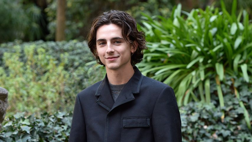 """Timothée Chalamet beim """"Call Me By Your Name""""-Fotocall in Rom"""
