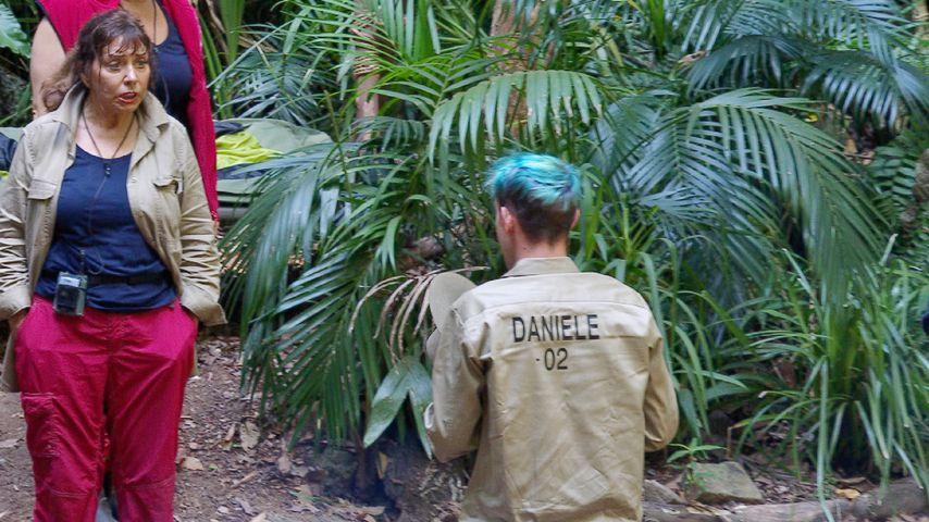 Dschungelcamp Tag 7: Tina York und Daniele Negroni
