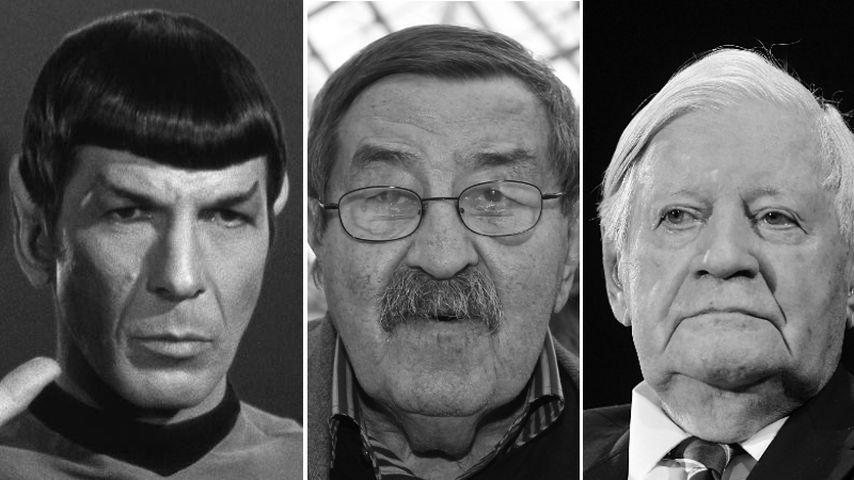 Tiefe Trauer: Diese Prominenten sind 2015 verstorben