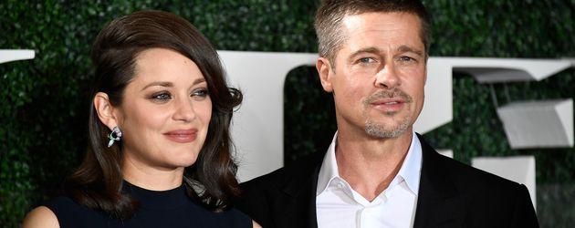 """Brad Pitt und Marion Cotillard bei der """"Allied""""-Premiere"""