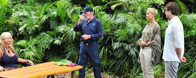 Eine Szene aus dem Dschungelcamp 2016