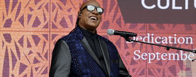 Stevie Wonder, Musiker