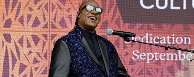 Stevie Wonder, Musiker